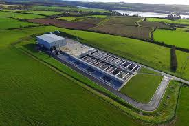 Green Schools and 5th Class visit the Water Treatment Plant in Carrigaline